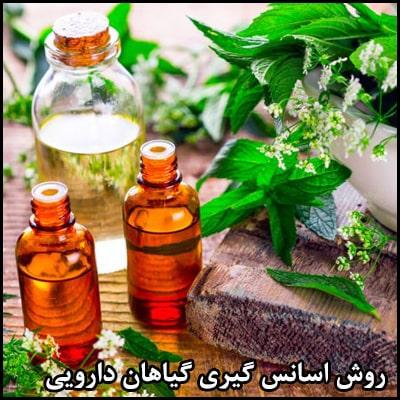 روش اسانس گیری گیاهان دارویی
