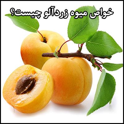 خواص میوه زردآلو چیست؟