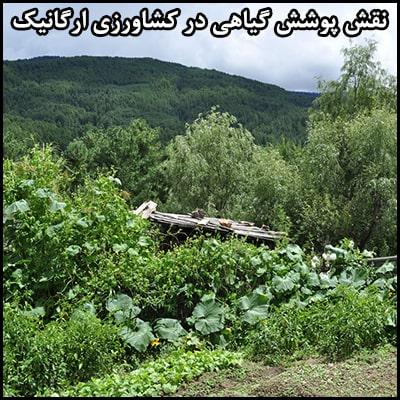 نقش پوشش گیاهی در کشاورزی ارگانیک