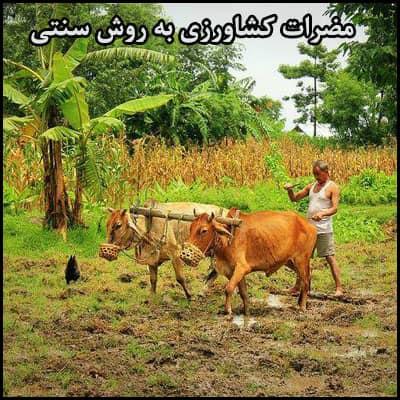 مضرات کشاورزی به روش سنتی