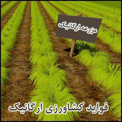 فواید کشاورزی ارگانیک