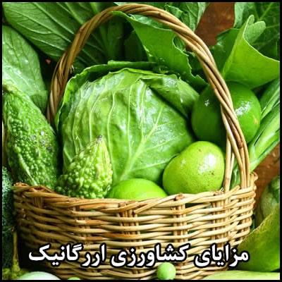 مزایای کشاورزی ارگانیک
