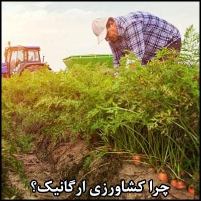 چرا کشاورزی ارگانیک؟