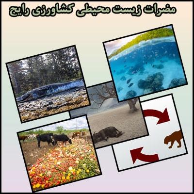 مضرات زیست محیطی کشاورزی رایج