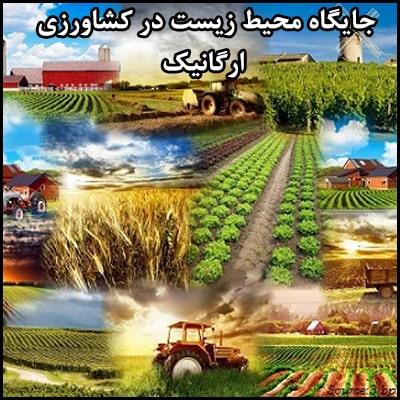 محیط زیست و کشاورزی ارگانیک