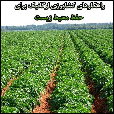 کشاورزی ارگانیک و حفظ محیط زیست