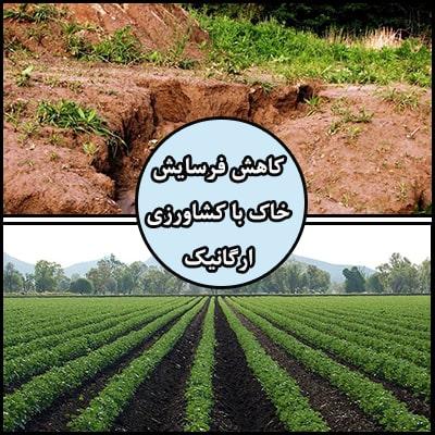 کاهش فرسایش خاک با کشاورزی ارگانیک