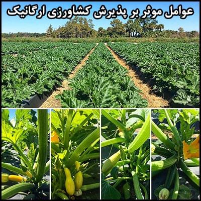 عوامل موثر بر پذیرش کشاورزی ارگانیک
