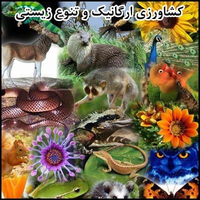 کشاورزی ارگانیک و تنوع زیستی