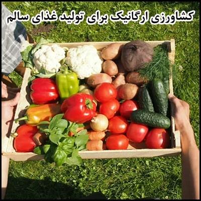 کشاورزی ارگانیک برای تولید غذای سالم