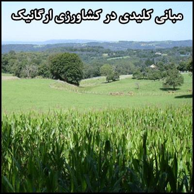 مبانی کلیدی در کشاورزی ارگانیک