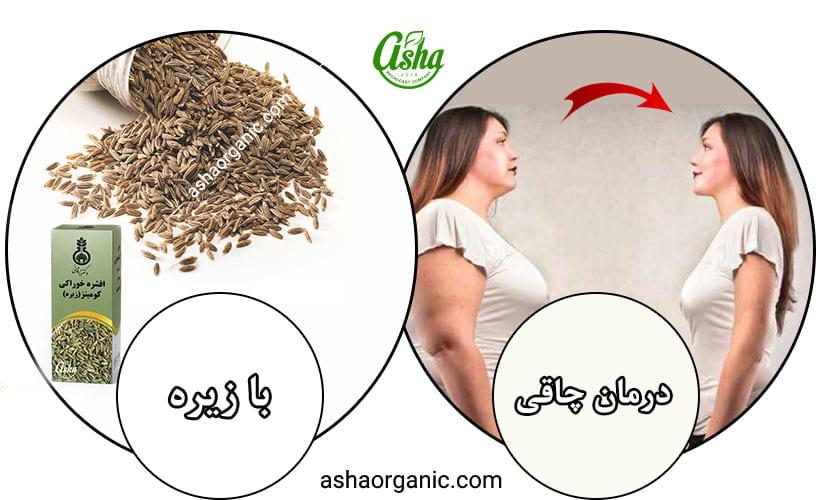 روش های گیاهی کاهش وزن