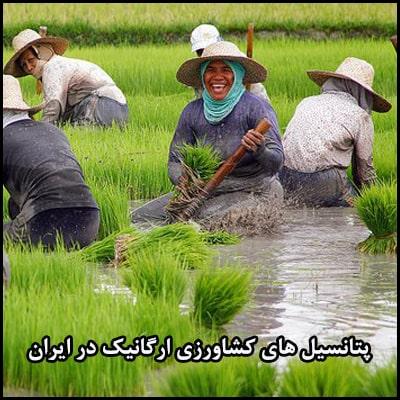 پتانسیل های کشاورزی ارگانیک در ایران