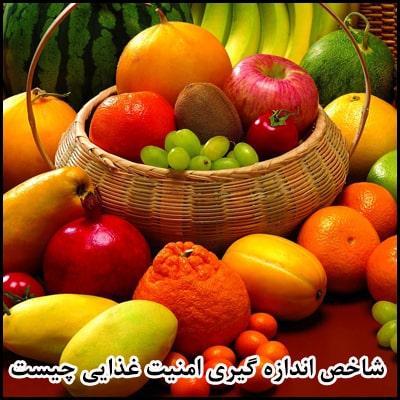 شاخص اندازه گیری امنیت غذایی چیست