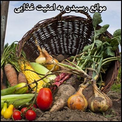 موانع رسیدن به امنیت غذایی