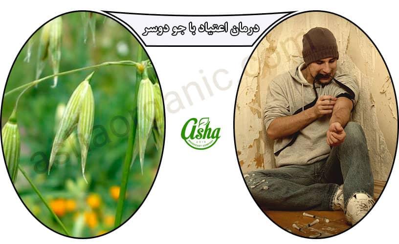 درمان اعتیاد با گیاهان دارویی