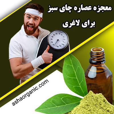 معجزه عصاره چای سبز برای لاغری