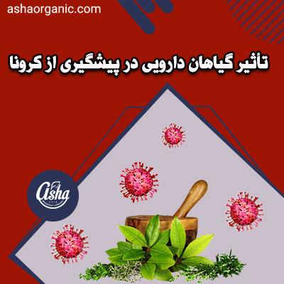 تأثیر گیاهان دارویی در پیشگیری از کرونا