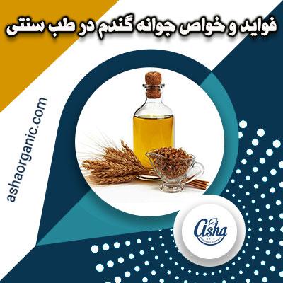 فواید و خواص جوانه گندم در طب سنتی