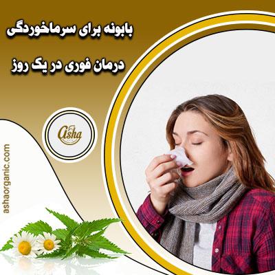 بابونه برای سرماخوردگی، درمان فوری در یک روز