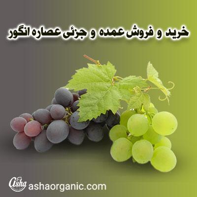 خرید و فروش عمده عصاره انگور